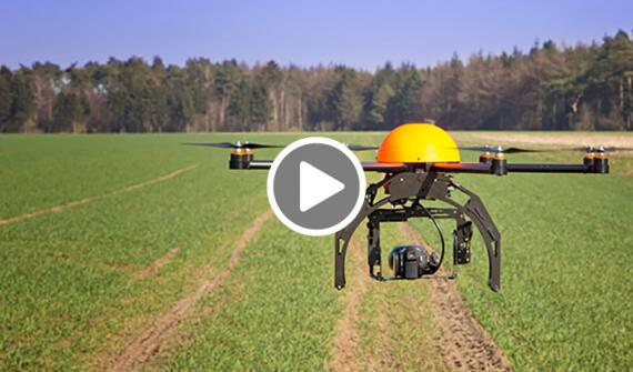 Geo-precision-agriculture---Part-III-Replanting-planning-solution-video-card